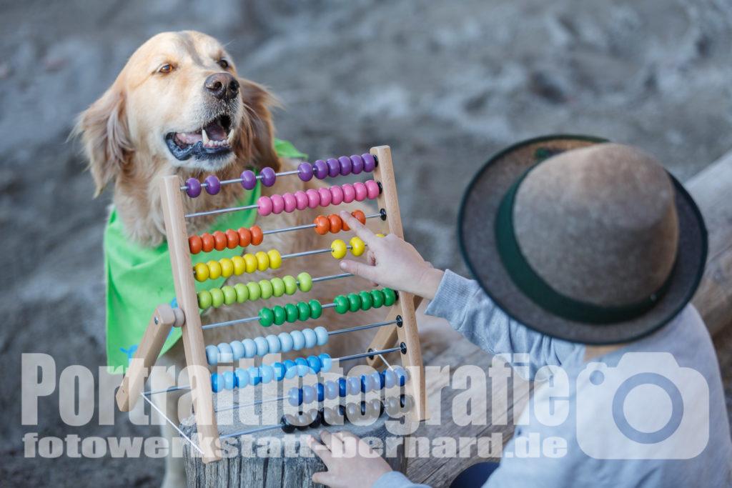 Hund Timber beim Rechnen - mit Kind an der Rechenmaschine