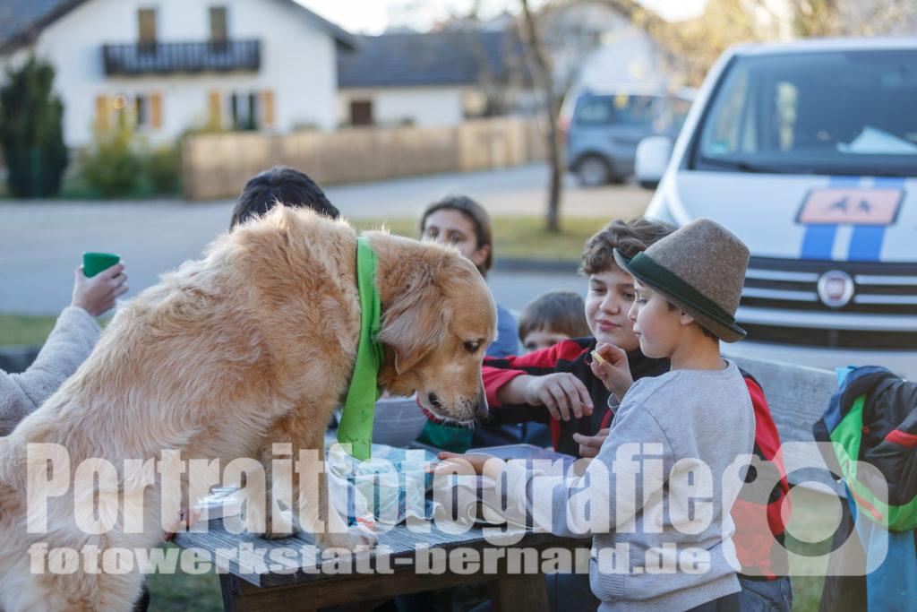 Hund Timber bei der Brotzeit