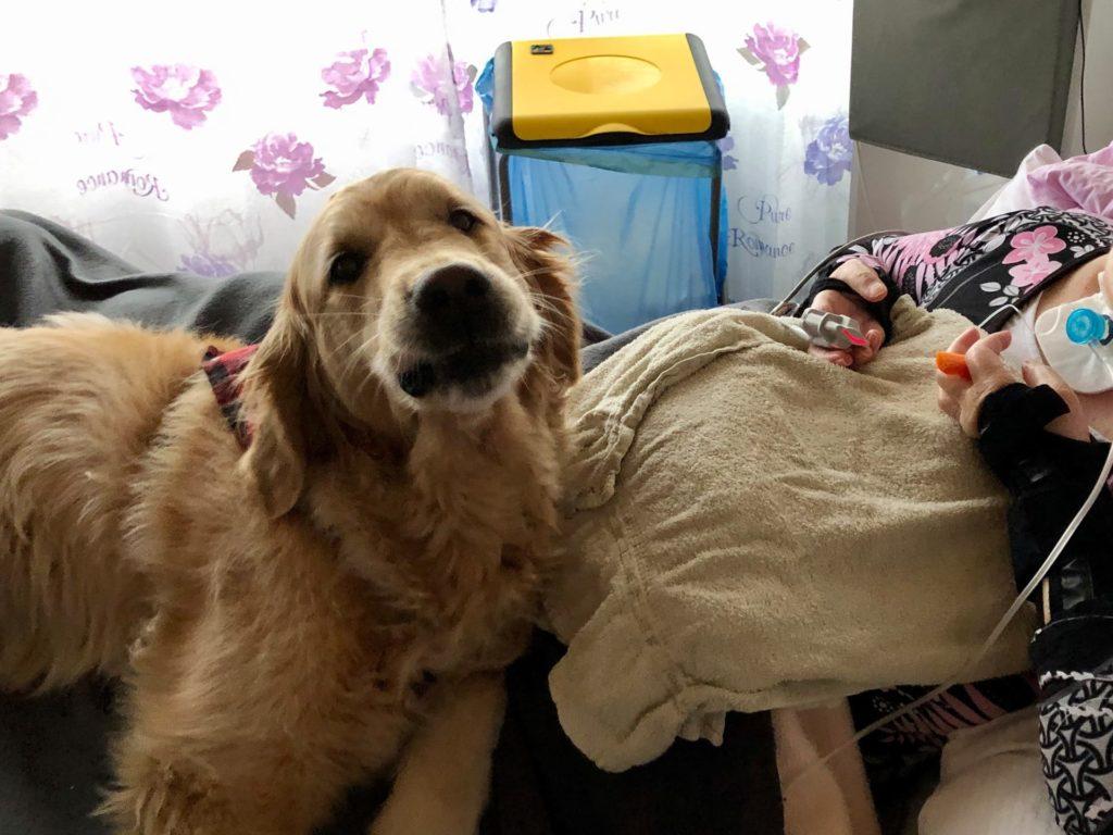 Hund Timber zu Besuch im Intensivpflegeheim - Timber liegt auf dem Bett und schaut