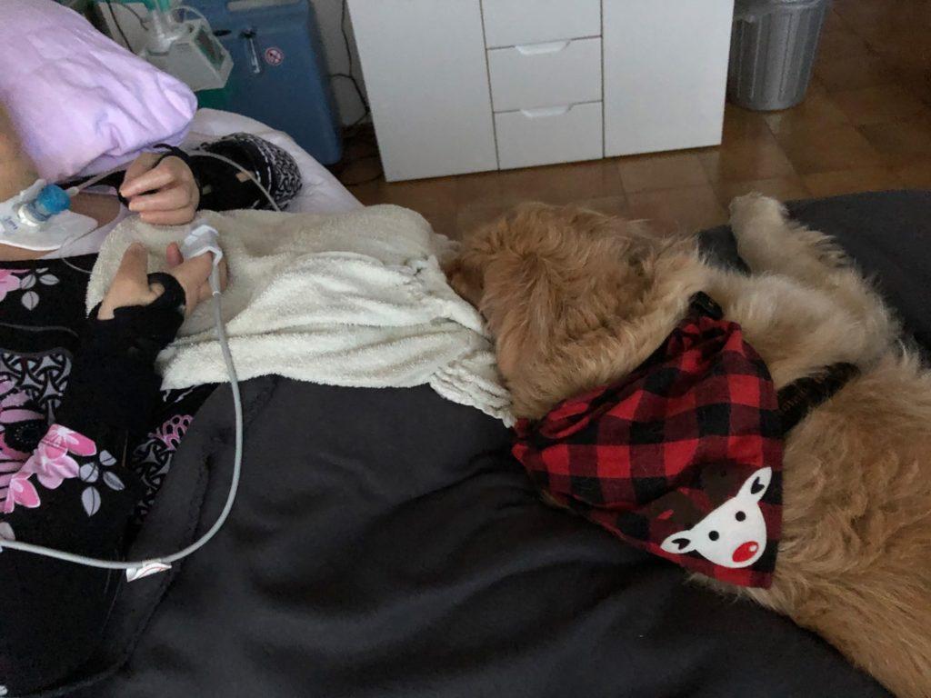 Hund Timber zu Besuch im Intensivpflegeheim - Timber liegt auf dem Bett