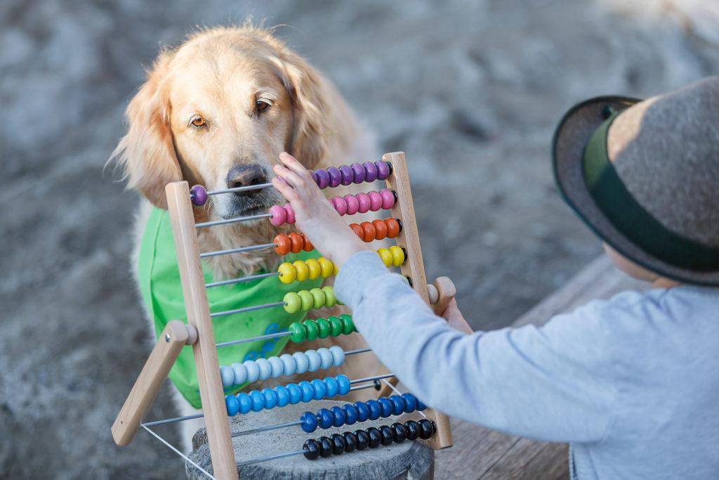 Hund Timber und Kind an der Rechenmaschine