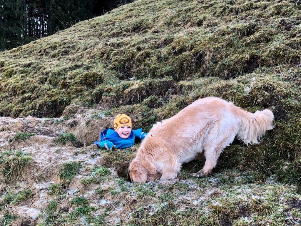 Hund Timber und ein Kind spielen in Erdloechern