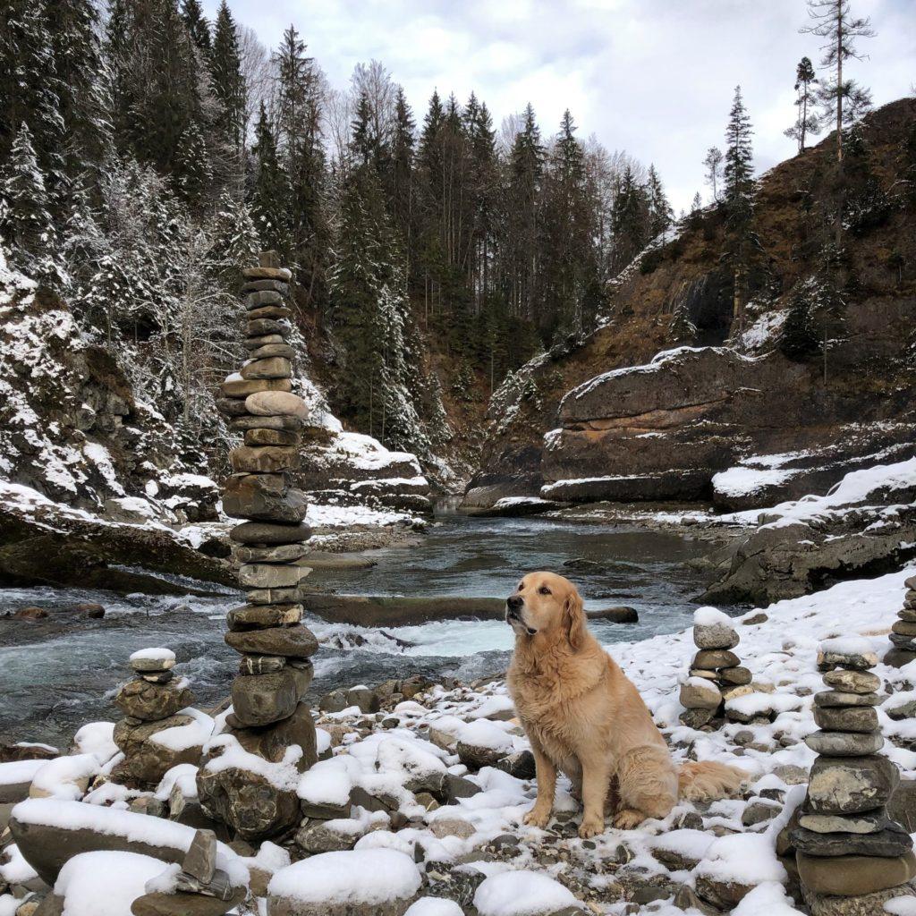Hund Timber und grosse Steinmaenchen