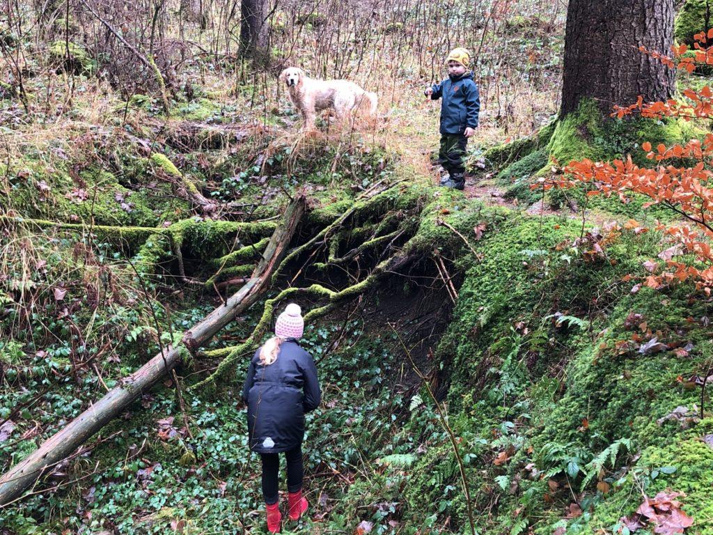 Kinder und Hund Timber im Wald