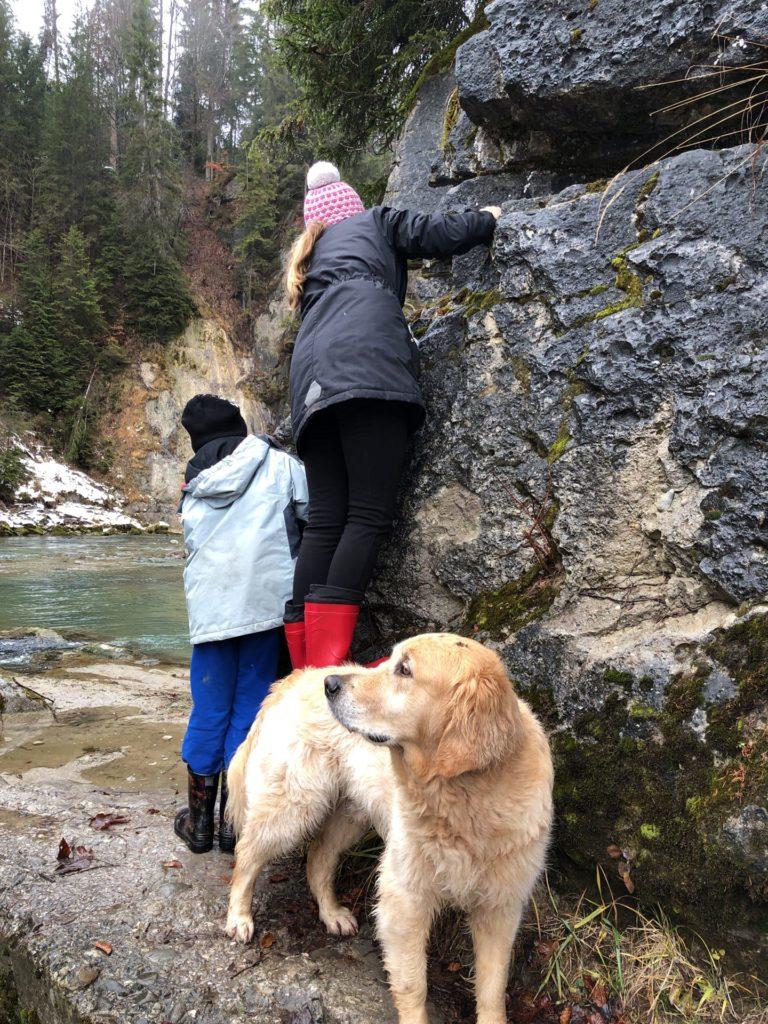 Hund Timber und Kinder auf Trollsuche