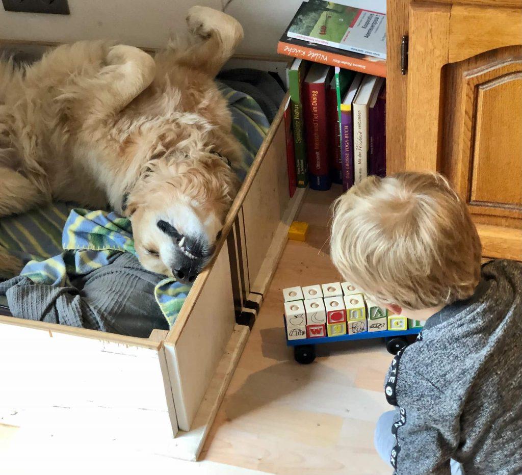 Timber schläft neben Kind mit Spielzeug Truck