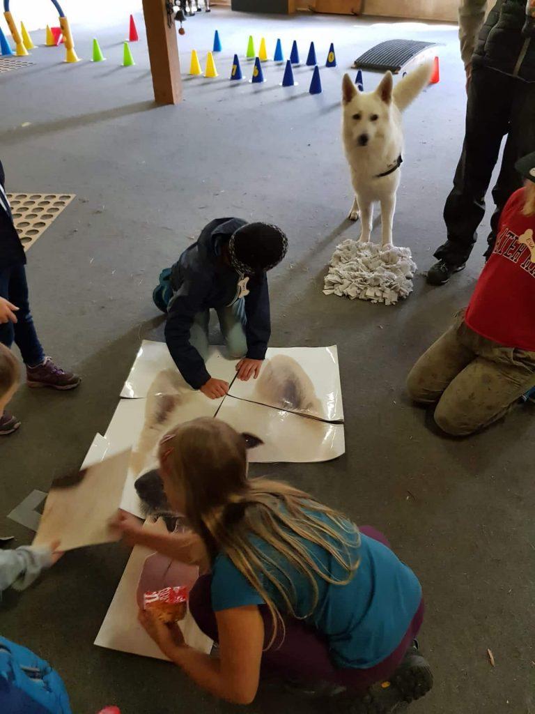 Kinder puzzlen ein Hundepuzzle